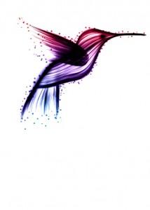 merlin_bird